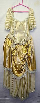 Quality Victorian Costume for Stage/Theatre Reenactment or Fancy Dress - 10/12