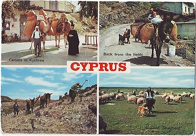 Old Postcard (1981) - Cyprus (Various Views)  - Posted