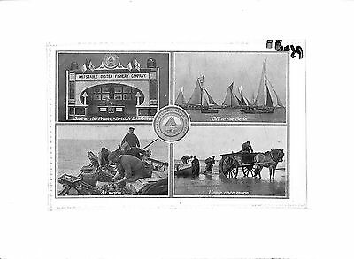 P596 1909 GB Royal Whitstable Native Oyster Advert Postcard