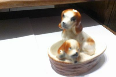 King Charles Spaniels Mother And Puppy In Their Basket Vintage