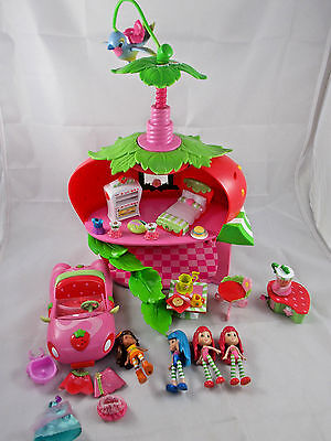 Hasbro Strawberry Shortcake House Car Accessories Figures Lot TCFC