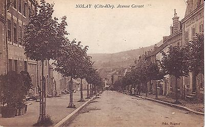 France Nolay - Avenue Carnot old unused postcard