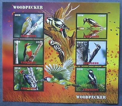 Comoros  2016 - Woodpeckers, 1 M/Sh, not perforated, MNH, PP 1263