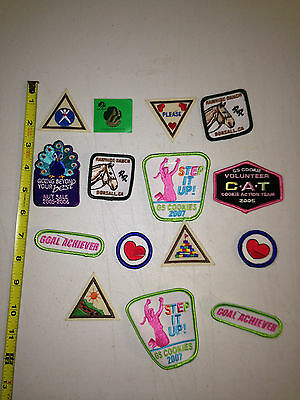 15 Girl Scout Patches Pin Brownies Cookies Lot Huge New Nice