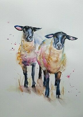 "ELLE SMITH ART. ORIGINAL SIGNED WATERCOLOUR PAINTING. 16x12""  BLACK FACE SHEEP"
