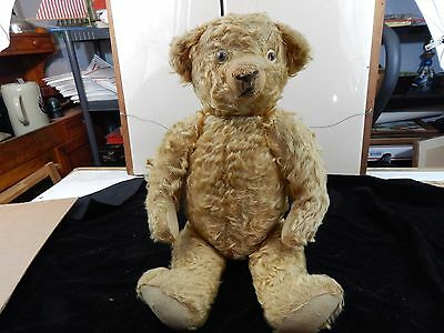 rare ANTIQUE TEDDY BEAR fully jointed