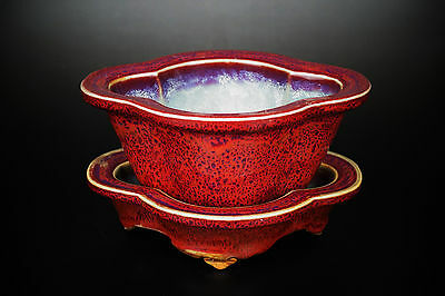 A Fine Collection of Chinese 12thC Jun Ware Porcelain Narcissus Basin
