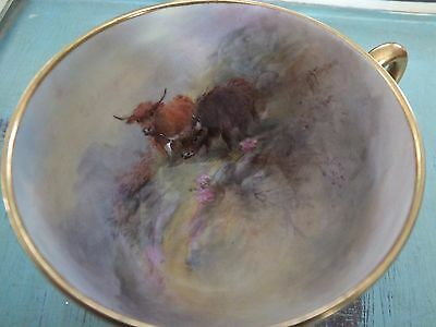 Royal Worcester Highland Cattle, Stinton painted cup.