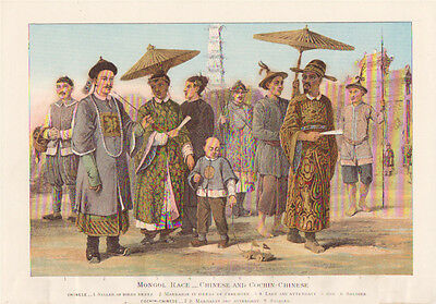 1901 lithograph Chinese and Cochin Chinese