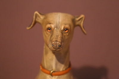Vintage Greyhound    /      Whippet