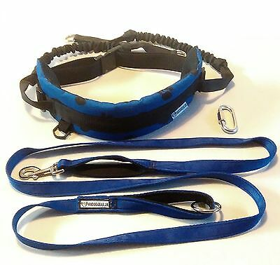 Hands Free Waist Dog Walking Belt With Fixed Shock Lines + Free Dog Lead