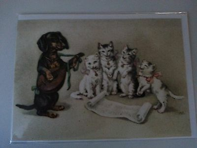 Antique reproduction dachsund kitty vintage greeting card MINT 1910