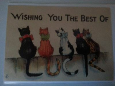 Antique cat kitty WISHING YOU LUCK reproduction greeting card MINT c1922