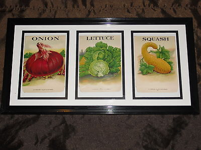 3 Original Unused Vegetable Seed Packets Matted and Framed