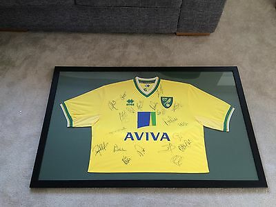 Signed And Framed Norwich City Shirt