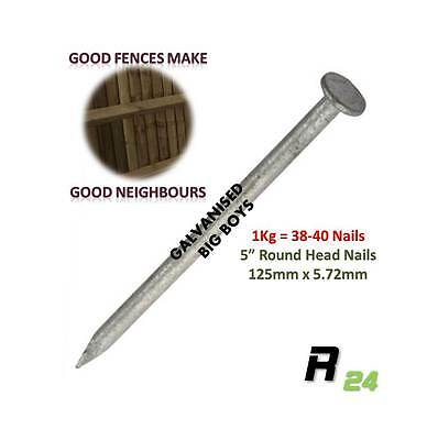"38-40 1Kg Galvanised Round Nails 125x5.72mm 5"" Perfect for Fence & Fence repairs"