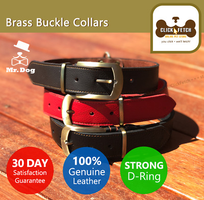 Genuine Leather Dog Collar Strong Brass Buckle Designer Quality Large Giant XL