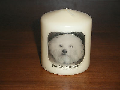 Candle Picture Bichon Frise Dog Can Be Personalised Birthday Memorial Friend New