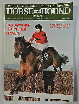 Horse and Hound Magazine. February 7,1986. Has Dawn Run Learnt Her Lesson?