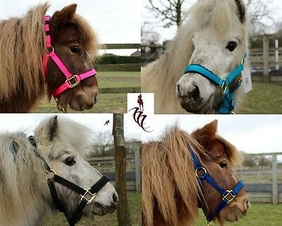 KM Elite Miniature Shetland and Foal HeadCollars. Pink, Navy, Blue and Black