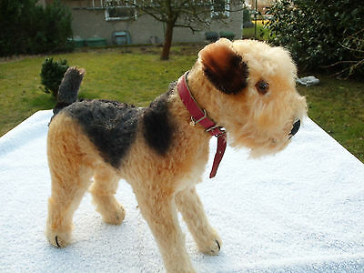 Steiff Hund Terry Airedale Terrier, rotes Halsband, ca. 20 cm,Restfahne US-Zone