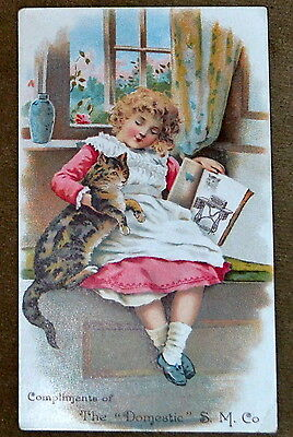 """Advertising Trade Card S.M.Co The """"Domestic"""" stamped J.J.Lever HORNELLSVILLE Ny"""