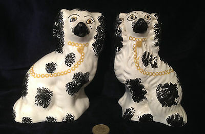 """GENUINE 19thC Pair Of Staffordshire Pottery Spaniel Dogs 5.75"""" Black White chain"""