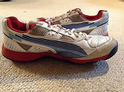 Puma Evospeed Cricket Shoes spikes - size 7 - in good condition