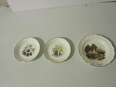 small collectors plates x 3.   royal worcester x 2 duches x 1
