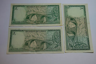 A Collection of Banknotes from Lebanon