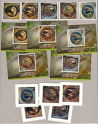 xca. DINOS OF CANADA 2016 Official DIE CUT 5 MNH bkt stamps + CARDS and TATTOOS