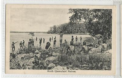 Vintage Postcard South Queensland Natives