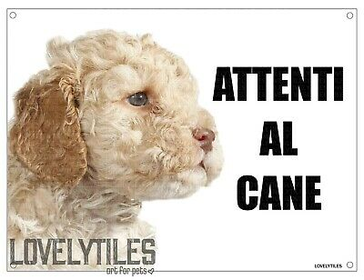 LAGOTTO attenti al cane mod 1 TARGA cartello IN METALLO