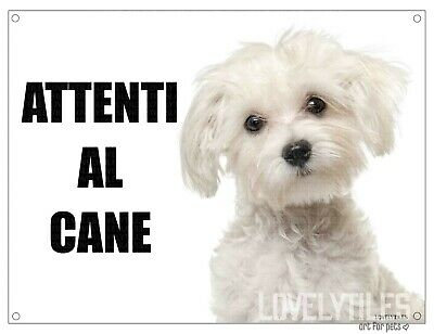 MALTESE attenti al cane mod 1 TARGA cartello CANE IN METALLO