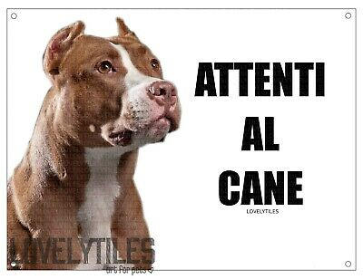PITBULL attenti al cane mod 1 TARGA cartello CANE IN METALLO