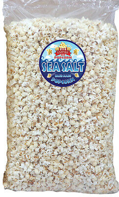 Huge Bulk Bag Of Cinema Style Salt Popcorn