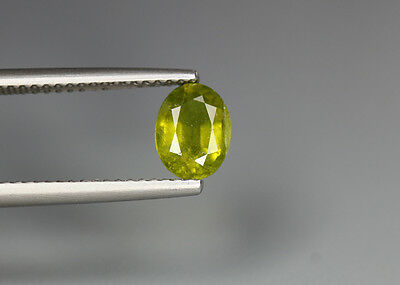 0.95 Cts_Top Grade Stunning !! Luster Gem_100 % Natural Grossular Green Garnet