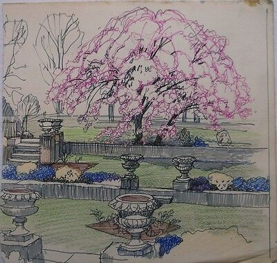 COLOURED GRAPHITE DRAWING by FREDERICK GEORGE WILLS 1901-1993 R.I. A GARDEN