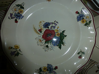 9 Assiettes Plates Sarreguemines Dv Agreste