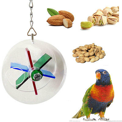 Wheel Shape Pet Bird Parrot Canary Hanging Foraging Funny Toys Cockatiel Budgie