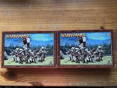 Warhammer Age of Sigmar Empire state troops and hero
