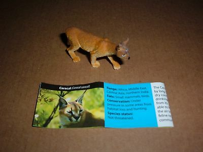 Series 1 American Yowie Caracal Brand New From Capsule