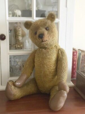 Antique Bear Old Large Hump Back Teddy