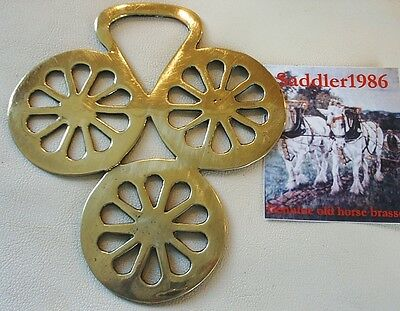 *19Th Century Horse Brass ~ A Sought After & Rare Wheel Pattern*