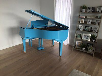COLOURFUL BABY GRAND PIANOS - Tesoro Nero