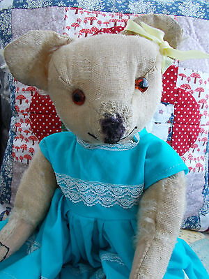"""""""Daphne"""" - Pretty Early Merrythought Bear - 1930's Label"""