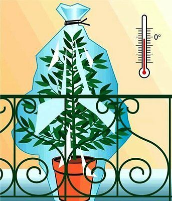 Frost Protection Winter Wraps for Plants Pack of 12 (6 GM and 6 PM)