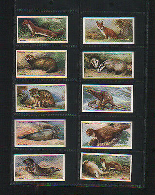 cigarette cards animals of the countryside 1939 full set
