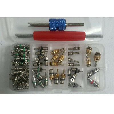 Hot 102 pcs Assortment A/C Schrader Valve Core&Tool 4 HVAC R134a/R12 Kit  GBNG
