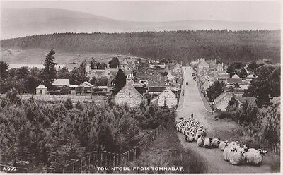 Rp Tomintoul From Tomnabat , Sheep On The Road , Real Photo Scotland C 1955
